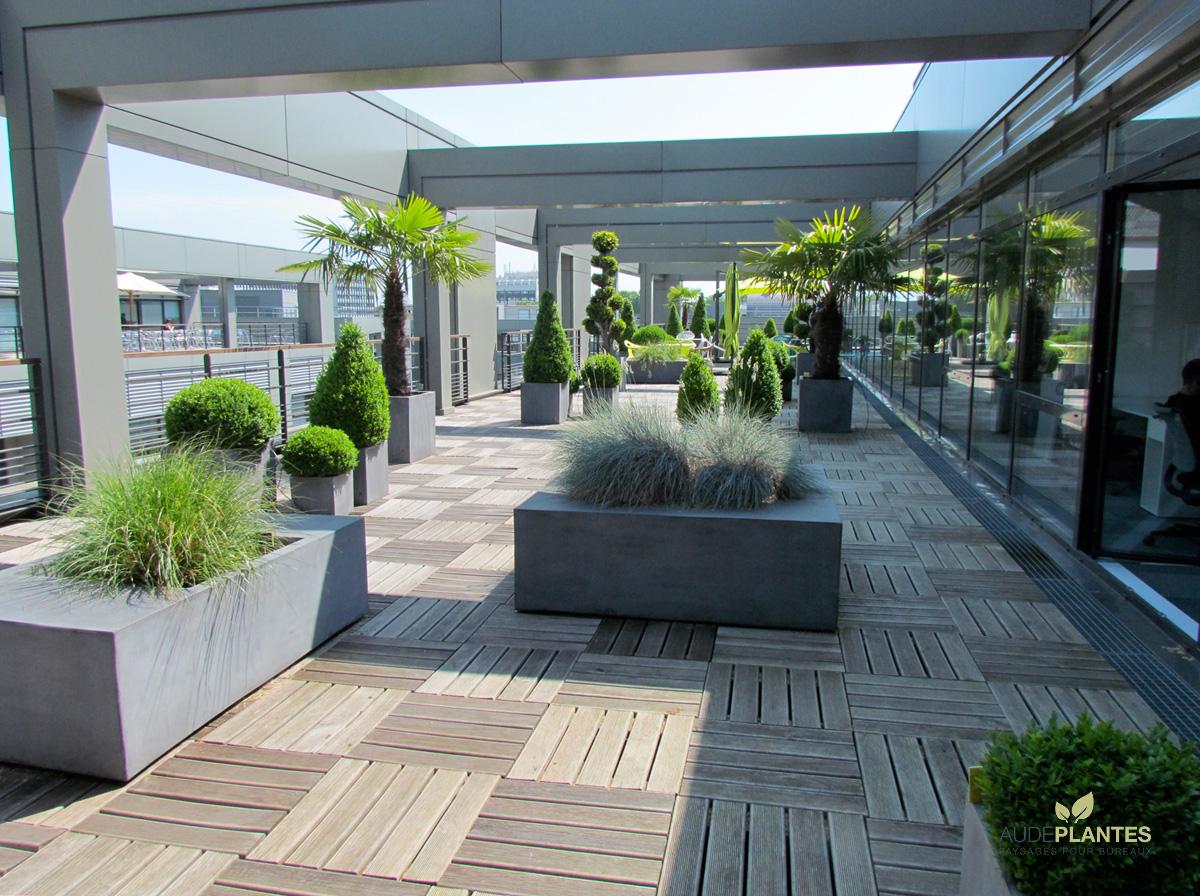 Plante pour terrasse fashion designs for Deco plante terrasse