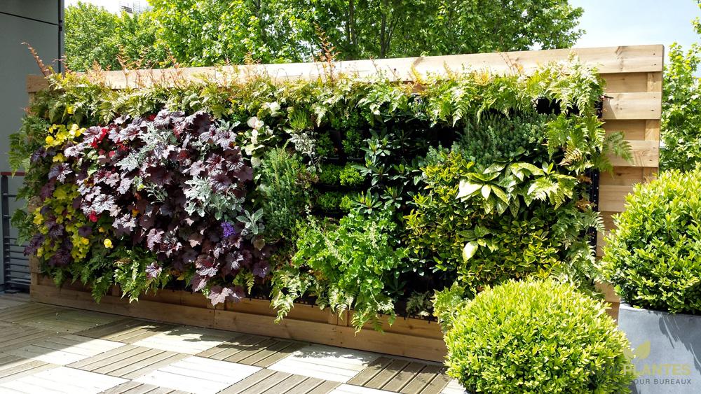 mur v g tal aude plantes la nature s 39 invite au bureau. Black Bedroom Furniture Sets. Home Design Ideas