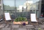 Aude plantes terrasse aménagement et service pour professionnels
