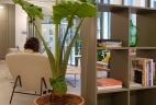 Espace ouvert de travail et de détente par AUDE Plantes