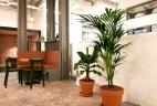 Aménagement d'espace de coworking par AUDE Plantes