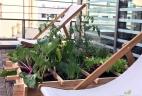 Aude plantes paysage pour bureau service fleurs terrasse entreprise exterieur