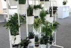 Jardin d'intérieur par AUDE Plantes