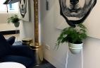 AUDE Plantes aménagement d'intérieur