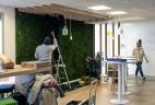 AUDE Plantes mur végétal stabilisé bien-être au travail