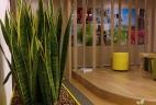 Aude plantes paysages pour bureaux espace de travail