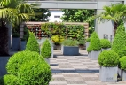 AUDE Plantes terrasse d'entreprise