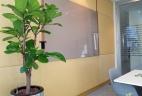 Aude plantes aménagement location pots plantes vertes intérieur extérieur