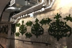 Aude plantes création végétale entretien et pose