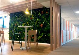 Nouveau mur végétal stabilisé